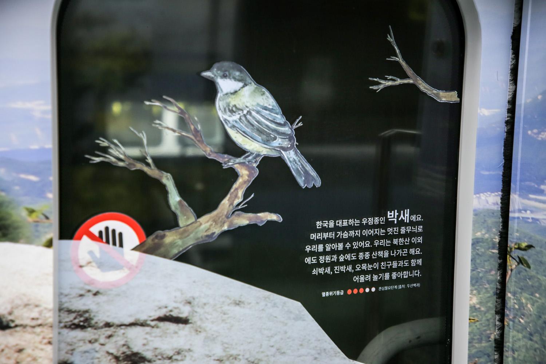 달리는 북한산_Original (34)