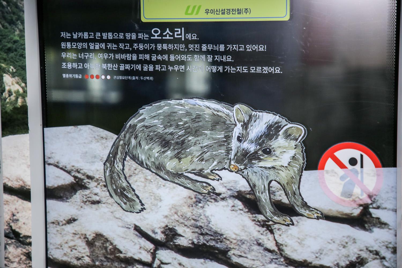 달리는 북한산_Original (33)