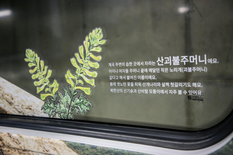 달리는 북한산_Original (13)