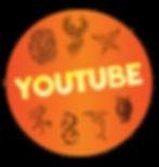 iJAM-IG Highlight-Youtube.png