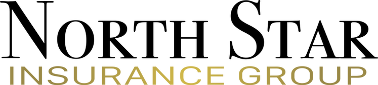 North Star Insurance Group Logo (Words C