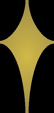 North Star Insurance Group Logo (Broken)