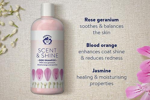 Scent & Shine Shampoo 30ml
