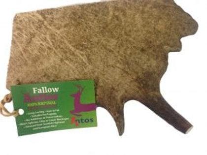 Fallow Antler Large