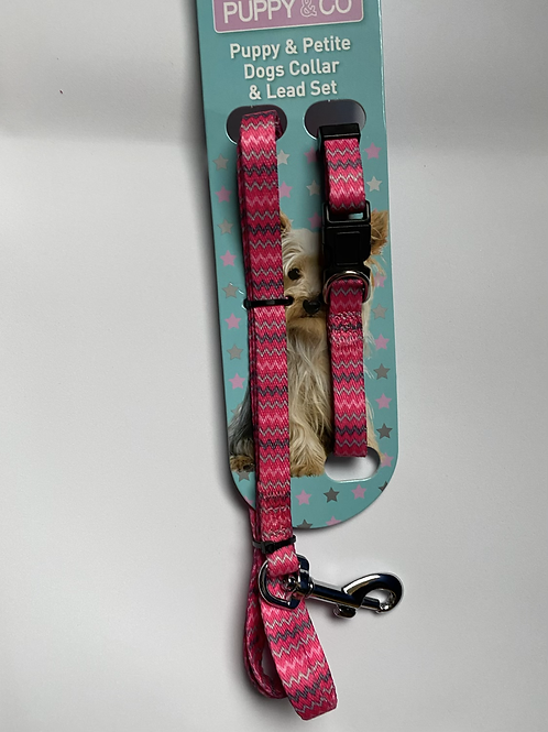 Puppy Collar and Lead Set