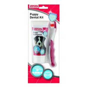 Puppy Toothbrush and Paste