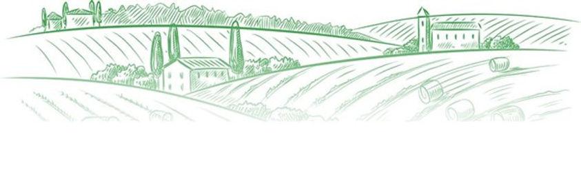 drawing landscape.jpg