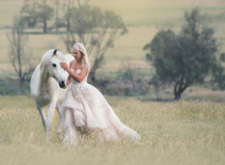 Horse Photography Australia: 22 GORGEOUS Horses I've Photographed This Year