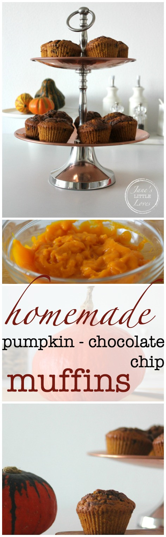 homemade pumpkin chocolate chip muffins
