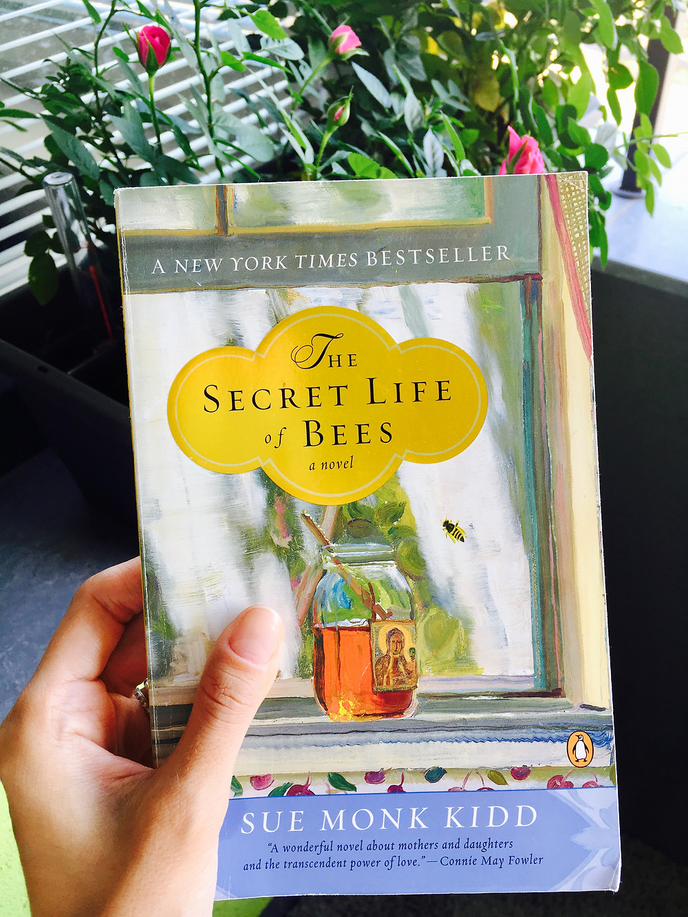 book secret life of bees