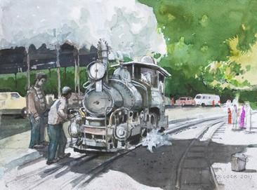 In Steam ('Himalayan Bird')