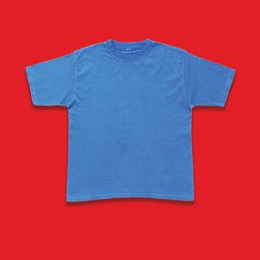 bluetshirt2.jpg