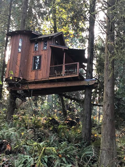 a large tree house in the woods