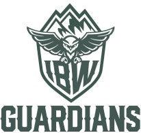 IBW Guardians Small.jpeg