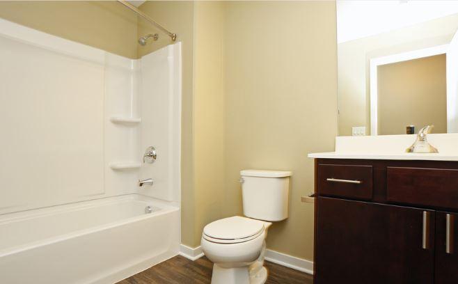 Bathroom (Lower Level)