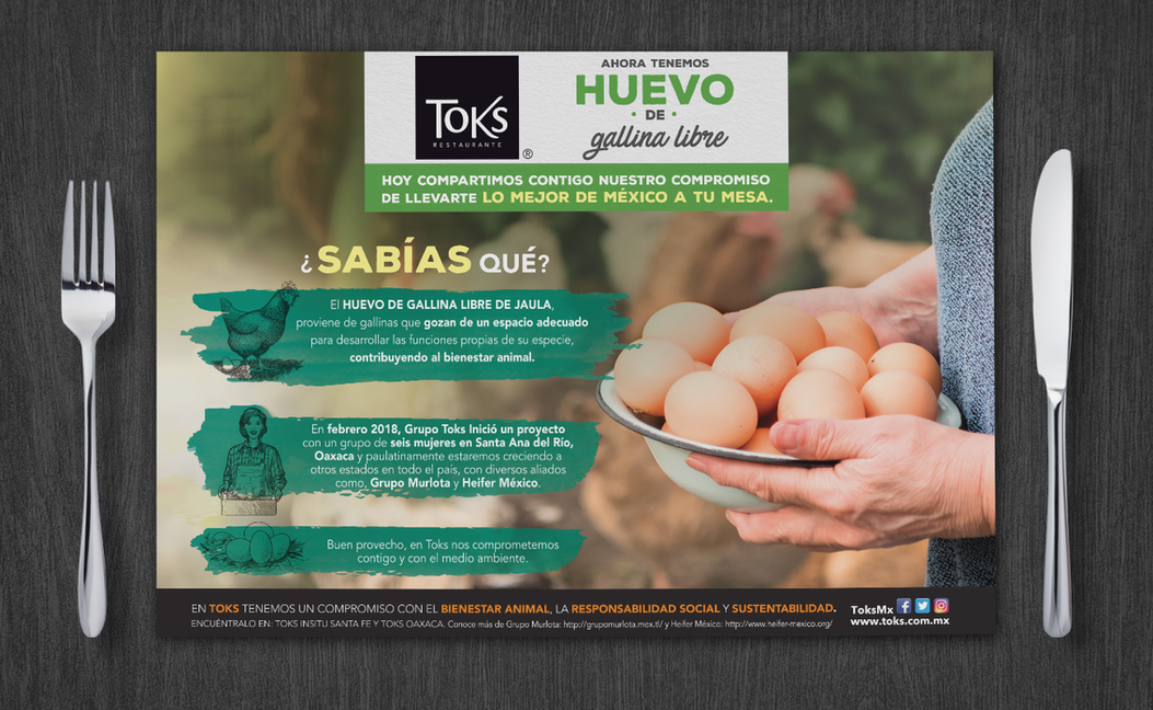 Portafolio_Infografía_Toks-Huevo.png