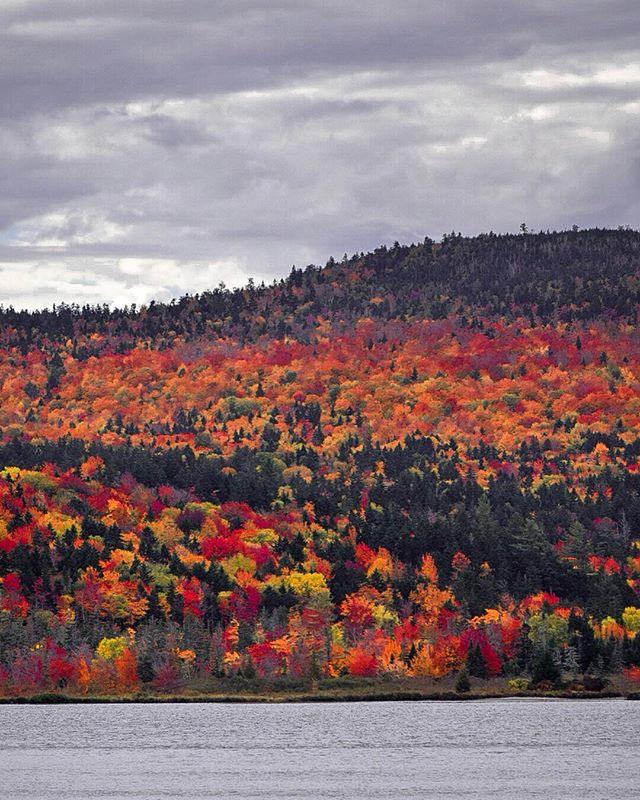 Fall Foliage in Rangeley, Maine