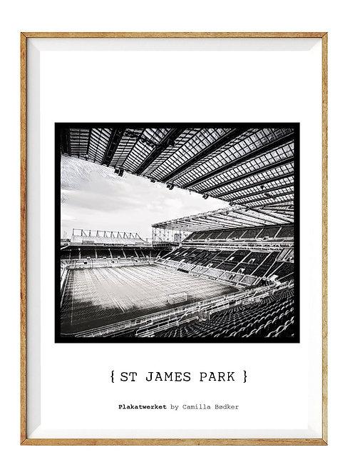 St James Park / En hyldest