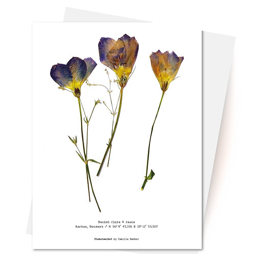 Flora & Fauna / Kort