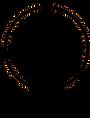 pictogramme-remplacement-changement-de-serrure-cassee-serrurier-paris-5