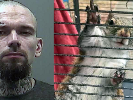 """Alabama man Accused of Attacking Police with """"Deeznutz"""""""