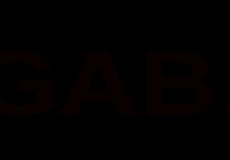 Gab get's Censored