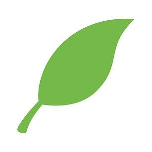 4X4_leaf.jpg