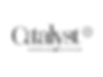 client logos - catalyst.png