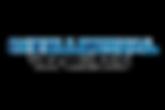 logo - intellectual ventures.png