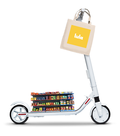 lula-items-on-scooter.png