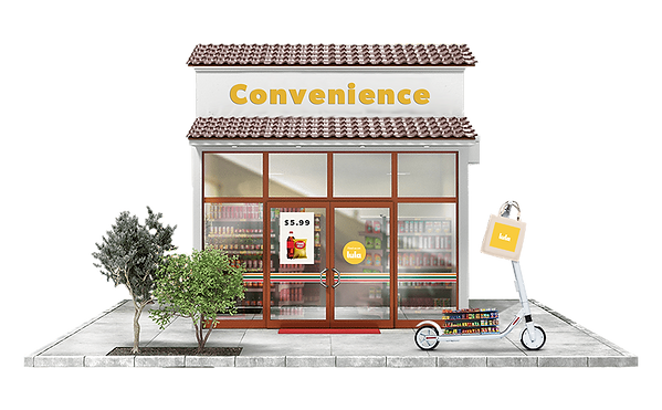 lula-c-store.png