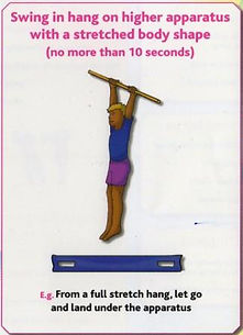Gymnastics C7 - Swing in hang on higher apparatus w