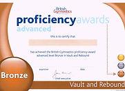 Gymnastics Bronze Vault & Rebound