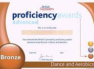 Bronze Dance & Aerobics
