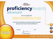 Gymnastics Gold Vault & Rebound
