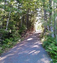 Mastodon Trail.jpg