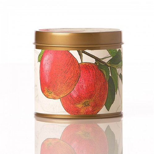 Rosy Rings Soy Tin Candle Spicy Apple 50hr