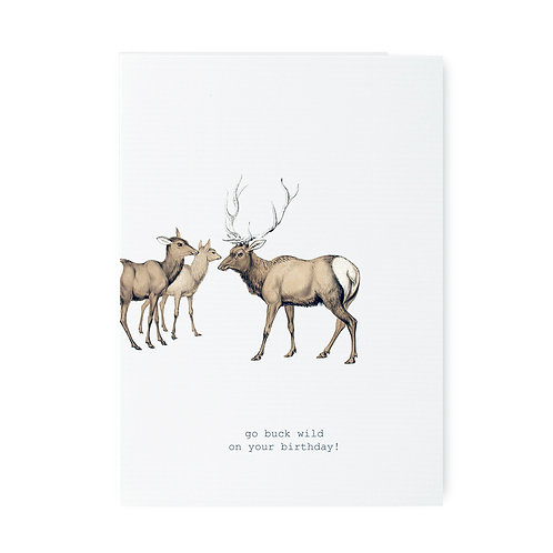 TokyoMilk - Card -  Go Buck Wild
