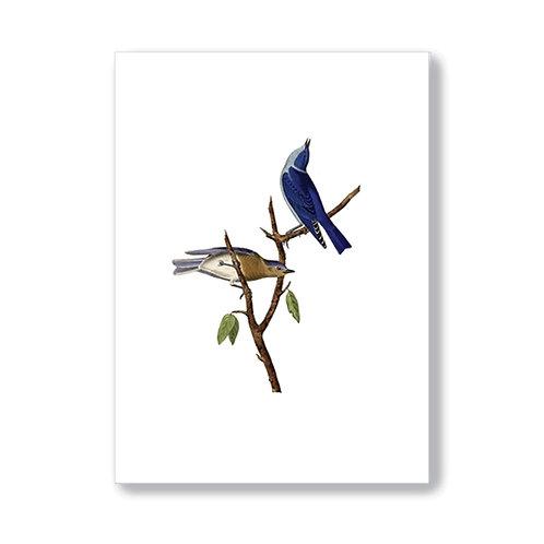 TokyoMilk - Card -  Blue Birds (Blank)