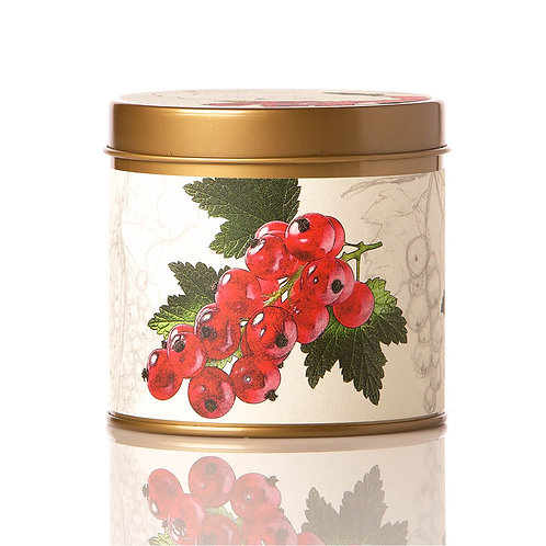 Rosy Rings Soy Tin Candle Redcurrant & Cranberry 50hr