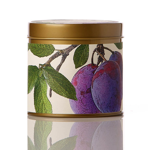 Rosy Rings Soy Tin Candle Wild Plum & Cannabis 50 Hr