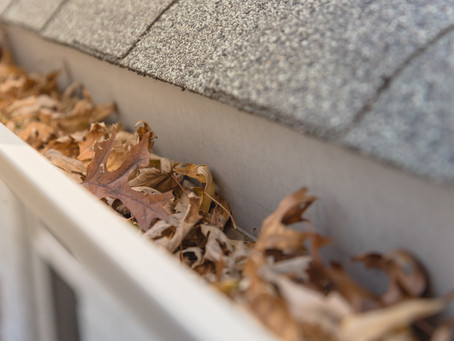 5 Home Repairs That You Need to Address Immediately