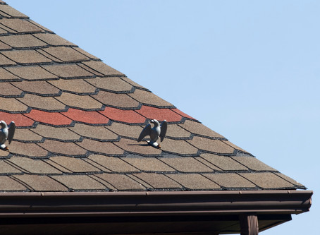 The Difference Between a Roof Inspection and a Roof Tune-Up