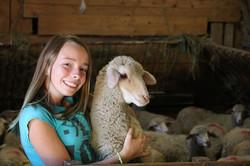 Visite de la ferme pour les groupes