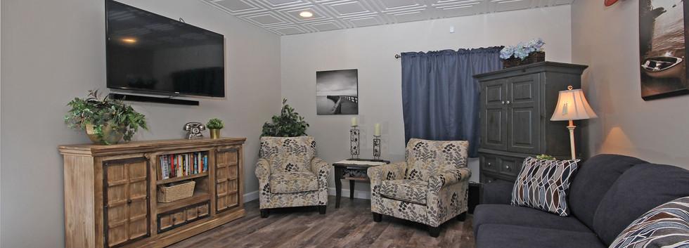 basement living room with sleeper sofa