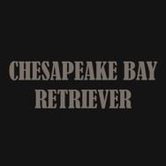 CHESAPEAKE BAY RETRIEVER.jpg