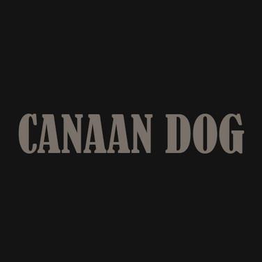 CANAAN DOG.jpg