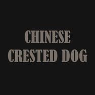 CHINESE CRESTED DOG.jpg