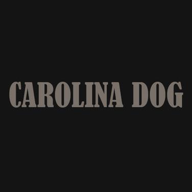 CAROLINA DOG.jpg