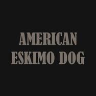 AMERICAN ESKIMO.jpg